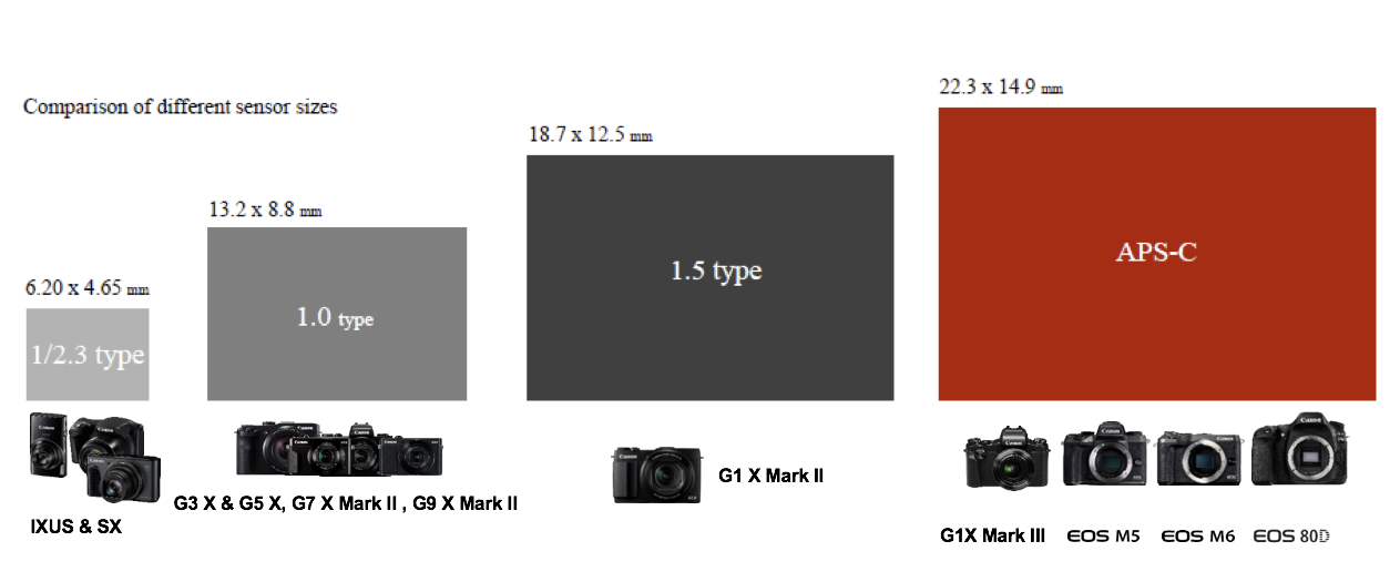 Canon Sensor Size